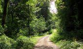 Randonnée Marche HARAMONT - en forêt de Retz_79_08_2019_vers Taillefontaine et Retheuil par les lisières - Photo 63