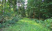 Randonnée A pied VILLERS-COTTERETS - le GR11A  dans la Forêt de Retz  - Photo 111