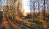 Trail Walk SAINT-JEAN-AUX-BOIS - en forêt de Compiègne_33_12_2019_les Tournantes de l'étang Saint-Jean et des Prés Saint-Jean - Photo 76