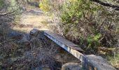 Randonnée Marche PLAN-D'AUPS-SAINTE-BAUME - source Huveaune, chemin des rois - Photo 11