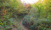 Randonnée Marche SAINT-JEAN-AUX-BOIS - en forêt de Compiègne_32_11_2019_les Tournantes de la Muette et sous la Tête Saint-Jean - Photo 165
