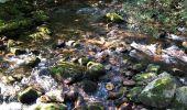 Trail Walk BIDARRAY - Aritzakun Village abandonné - Photo 6