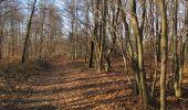 Trail On foot VIEUX-MOULIN - en forêt de Compiègne_23_la Grotte des Ramoneurs_le Mont Berny - Photo 99