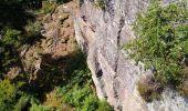 Randonnée Marche OTTROTT - Boucle Sainte Odile & mur Paien - Photo 1