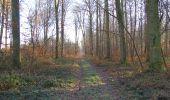Trail Walk SAINT-JEAN-AUX-BOIS - en forêt de Compiègne_33_12_2019_les Tournantes de l'étang Saint-Jean et des Prés Saint-Jean - Photo 72