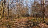 Trail On foot VIEUX-MOULIN - en forêt de Compiègne_23_la Grotte des Ramoneurs_le Mont Berny - Photo 17