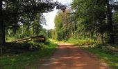 Randonnée Marche HARAMONT - en forêt de Retz_79_08_2019_vers Taillefontaine et Retheuil par les lisières - Photo 119