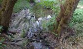 Randonnée Marche Tellin - repérage zero carbone 16092020 - Photo 15