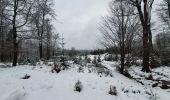 Trail Walk Sainte-Ode - rando lavacherie 29/12/2020 - Photo 20