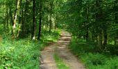 Randonnée Marche HARAMONT - en forêt de Retz_79_08_2019_vers Taillefontaine et Retheuil par les lisières - Photo 78