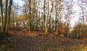 Trail On foot VIEUX-MOULIN - en forêt de Compiègne_23_la Grotte des Ramoneurs_le Mont Berny - Photo 124