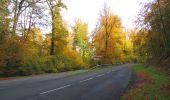 Randonnée Marche SAINT-JEAN-AUX-BOIS - en forêt de Compiègne_32_11_2019_les Tournantes de la Muette et sous la Tête Saint-Jean - Photo 152