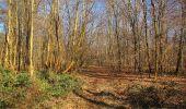 Trail Walk PIERREFONDS - en forêt de Compiègne_24_Tournantes sur le Voliard et sur la Fortelle_chaussée Brunehaut - Photo 69