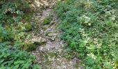 Randonnée Marche Tellin - repérage zero carbone 16092020 - Photo 18