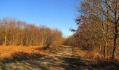 Trail Walk PIERREFONDS - en forêt de Compiègne_24_Tournantes sur le Voliard et sur la Fortelle_chaussée Brunehaut - Photo 18