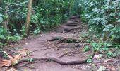 Randonnée Marche LE PRECHEUR - Cascade de la couleuvre - Photo 14