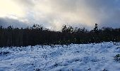 Trail Walk Sainte-Ode - rando lavacherie 29/12/2020 - Photo 29