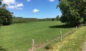 Randonnée Marche Havelange - Bois, Rivière et champs - Photo 11