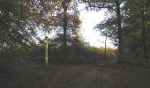 Randonnée Marche SAINT-JEAN-AUX-BOIS - en forêt de Compiègne_19_le Puits d'Antin_les Mares St-Louis_La Muette - Photo 90