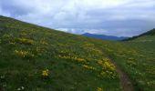 Trail Walk SENTHEIM - Sentheim Rossberg - Photo 16