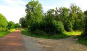 Randonnée Marche COYOLLES - en forêt de Retz_78_les rayons du Rond Capitaine - Photo 127