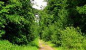 Randonnée Marche COYOLLES - en forêt de Retz_78_les rayons du Rond Capitaine - Photo 46