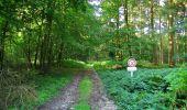 Randonnée Marche HARAMONT - en forêt de Retz_79_08_2019_vers Taillefontaine et Retheuil par les lisières - Photo 10
