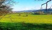 Trail Walk Viroinval - Le Tienne aux Pauquis et la Roche à Lomme - Photo 2
