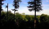 Randonnée Marche SAINT-JEAN-AUX-BOIS - en forêt de Compiègne_6_les Grands Monts_la route tournante sur la tête St-Jean - Photo 185