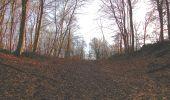 Trail On foot VIEUX-MOULIN - en forêt de Compiègne_23_la Grotte des Ramoneurs_le Mont Berny - Photo 129