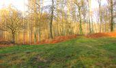 Randonnée A pied VILLERS-COTTERETS - le GR11A  dans la Forêt de Retz  - Photo 29