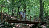 Randonnée Marche Spa - J et L - Photo 1