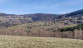 Randonnée Marche BLANCHERUPT - 2020-02-15 Marche Blancherupt Perheux - Photo 5