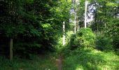 Randonnée Marche SAINT-JEAN-AUX-BOIS - en forêt de Compiègne_6_les Grands Monts_la route tournante sur la tête St-Jean - Photo 134