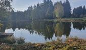 Trail Walk ECROMAGNY - Les 1000 étangs à Ecromagny - Photo 5