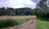 Trail Walk SENTHEIM - Sentheim Rossberg - Photo 24