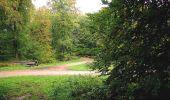 Randonnée A pied VILLERS-COTTERETS - le GR11A  dans la Forêt de Retz  - Photo 89