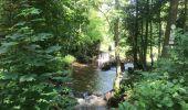 Trail Walk REICHSHOFFEN - 2020-05-28  Plan D'eau De Wolfartshoffen au printemps - Photo 6