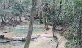 Randonnée Marche PLAN-D'AUPS-SAINTE-BAUME - source Huveaune, chemin des rois - Photo 3