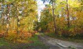 Randonnée Marche SAINT-JEAN-AUX-BOIS - en forêt de Compiègne_19_le Puits d'Antin_les Mares St-Louis_La Muette - Photo 21