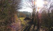 Trail Walk SAINT-JEAN-AUX-BOIS - en forêt de Compiègne_33_12_2019_les Tournantes de l'étang Saint-Jean et des Prés Saint-Jean - Photo 206