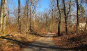 Trail Walk PIERREFONDS - en forêt de Compiègne_24_Tournantes sur le Voliard et sur la Fortelle_chaussée Brunehaut - Photo 149