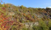 Trail Walk Namur - Balade dans les anciennes carrières d'Asty-Moulin - Photo 5