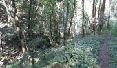 Randonnée Marche Yvoir - RB3 : GRP125 GR126 et GR129 - Photo 3