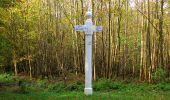 Randonnée Marche SAINT-JEAN-AUX-BOIS - en forêt de Compiègne_32_11_2019_les Tournantes de la Muette et sous la Tête Saint-Jean - Photo 180