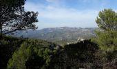Randonnée Marche ROQUEVAIRE - Garlaban au départ de Lascours  - Photo 15