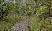 Trail Walk Andenne - sclaigneaux 1 - Photo 4