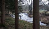 Trail Nordic's walk Plombières - moresnet - Photo 3