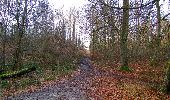 Trail On foot VIEUX-MOULIN - en forêt de Compiègne_23_la Grotte des Ramoneurs_le Mont Berny - Photo 122