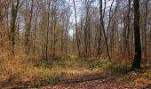 Trail Walk PIERREFONDS - en forêt de Compiègne_24_Tournantes sur le Voliard et sur la Fortelle_chaussée Brunehaut - Photo 124
